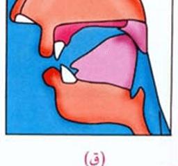 hmm-4